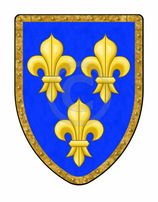 Fleur de Lis shield with blue and gold with brass colored rim