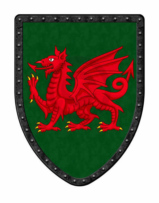 Red Dragon on Green medieval shield