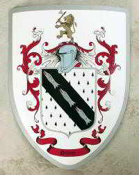 Custom medieval shield with knight crest  containing family coat of arms