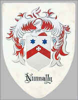 Nunnally heraldry version of coats of arms for the family