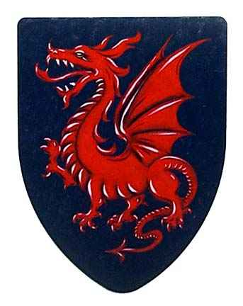 Dragon Shield - Red on Black