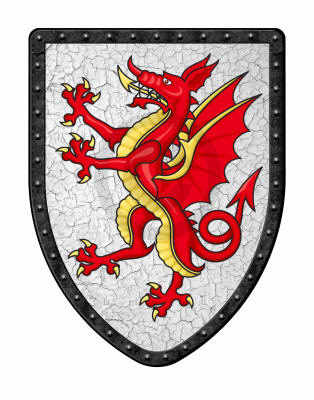 Tudur Dragon Shield