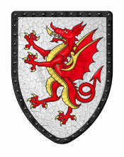 Tudor Dragon Shield